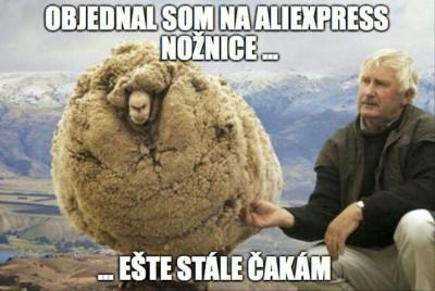 Aliexpress?